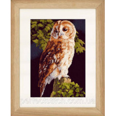 PN-0146814 Набор для вышивки крестом LanArte Owl Сова