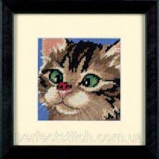 07206 Косоглазый котенок Набор для вышивания (гобелен) DIMENSIONS