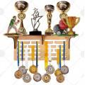 Медальницы